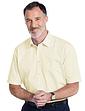 Double Two Non-Iron Short Sleeve Shirt