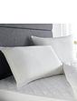 Downland Anti Bacterial Pillow Pair