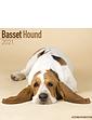 Basset Hound 2021 Calendar