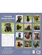 Chocolate Labrador Retriever 2021 Calendar