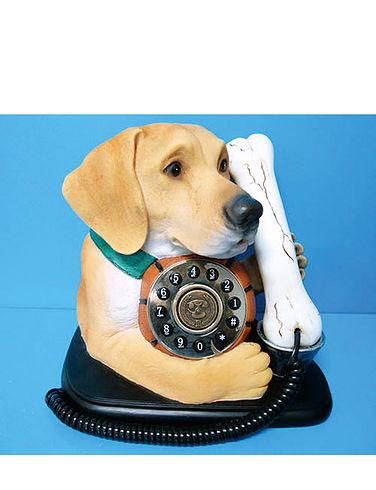 Labrador Telephone