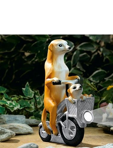 Meerkat And Baby On A Bicycle