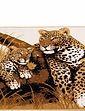 Big Leopard Rug