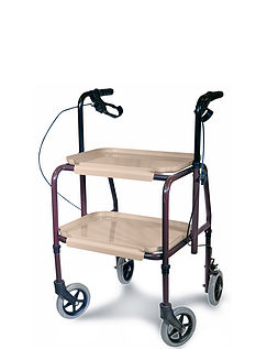 Handy Adjustable Trolley