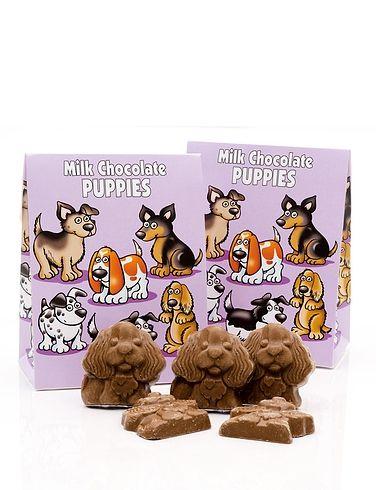 Chocolate Puppies