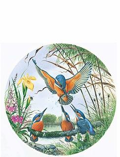 Kingfishers - Circular Puzzle