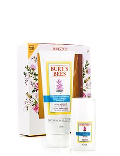 Burts Bees Skin Nourishment Starter Kit