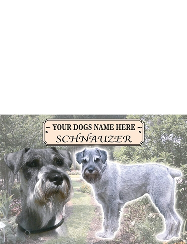 Schnauzer Best Of Breeds Selection