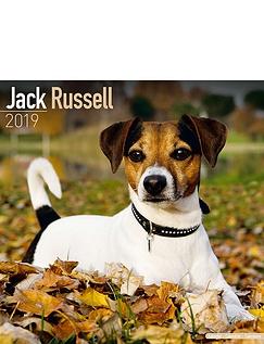 Jack Russell Calendar