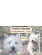 Highland Terrier Best Of Breeds Selection