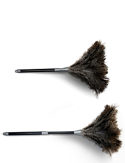 Anti Allergenic Real Ostrich Feather Duster