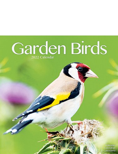 Garden Birds Calendar