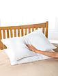 Slientnight Ultra Bounce Pillow