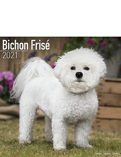 Bichon Frise 2021 Calendar