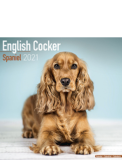English Cocker Spaniel 2021 Calendar