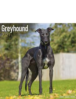 Greyhound 2021 Calendar